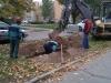 Rozšírenie parkoviska na Magurskej, náhradná výsadba v Malej Prahe, či oprava múra na Hradbovej – dokumentovali sme priebeh práv v týchto lokalitách.