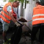 Aktivační pracovníci dnes vymieňali koše na psie exkrementy. Nové koše osadili na Dargovskej , Vojenskej a Škultétyho ulici. Tiež vypratali parkovisko za Ges klubom na Kuzmányho sídlisku.