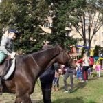 7.9.2017 Dnes zažili deti v Materskej škole Park Angelinum výnimočné dopoludnie. Na návštevu prišiel nádherný parkúrový koník Timber. Aj keď niektoré deti živého koňa videli po prvý krát, veľa o ňom vedeli. S pani riaditeľkou a pani učiteľkami sa ešte pred návštevou učili o živote koní a tak zodpovedali všetky otázky Timberovho majiteľa zo Slovenskej […]