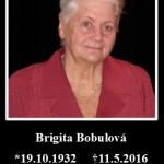 Brigita Bobulová (19.10.1932 Lučenec – 11.5.2016 Košice) S veľkým zármutkom sme prijali správu, že dnes ráno nás po ťažkej chorobe navždy opustila režisérka a herečka Brigita Bobulová… Divadlu zasvätila celý svoj život, či už ako herečka vo filmoch Roky prelomu (1989), Šiesta vesta (1986), Džarkovia (1973), Keby som mal pušku (1971), no najmä ako učiteľka […]