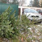 ZBYSTRITE POZORNOSŤ! ZBER VIANOČNÝCH STROMČEKOV Od 7.januára (utorok) začne spoločnosť KOSIT a.s. s tradičným zberom vianočných stromčekov od obyvateľov mesta Košice. Stromčeky by mali byť očistené od ozdôb a umiestnené vedľa smetných nádob určených na komunálny odpad. Táto služba bude vykonávaná na základe denného monitoringu v koordinácii s mestom Košice a potrvá 2 až 3 […]